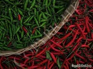 chili-peppers-003